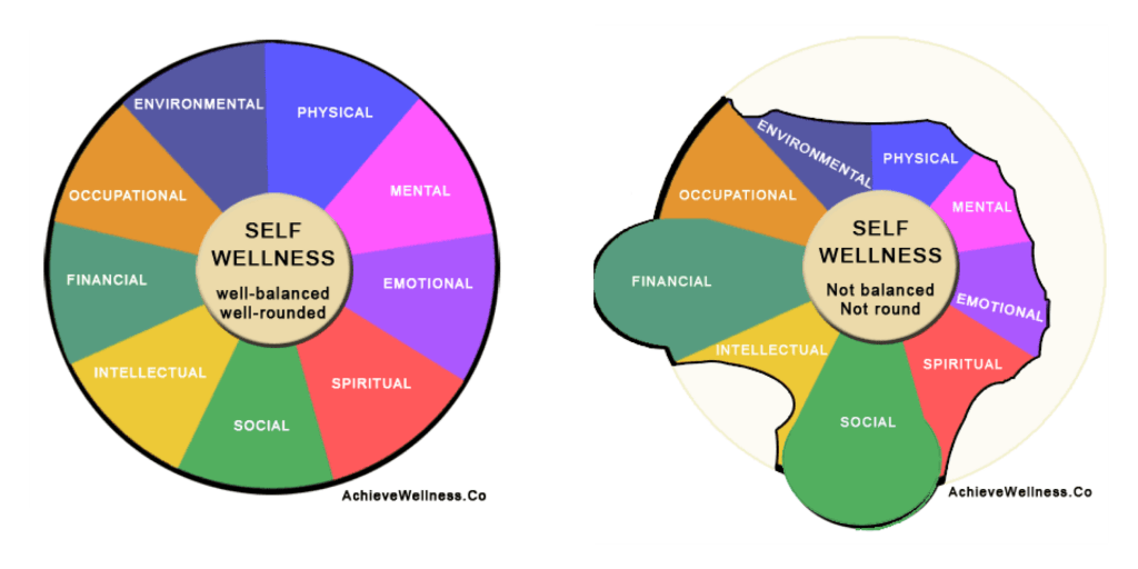 Wellness Wheel, Components of Health, Components of Wellness, What is Health, What is Wellness, Project School Wellness, Janelle Kay