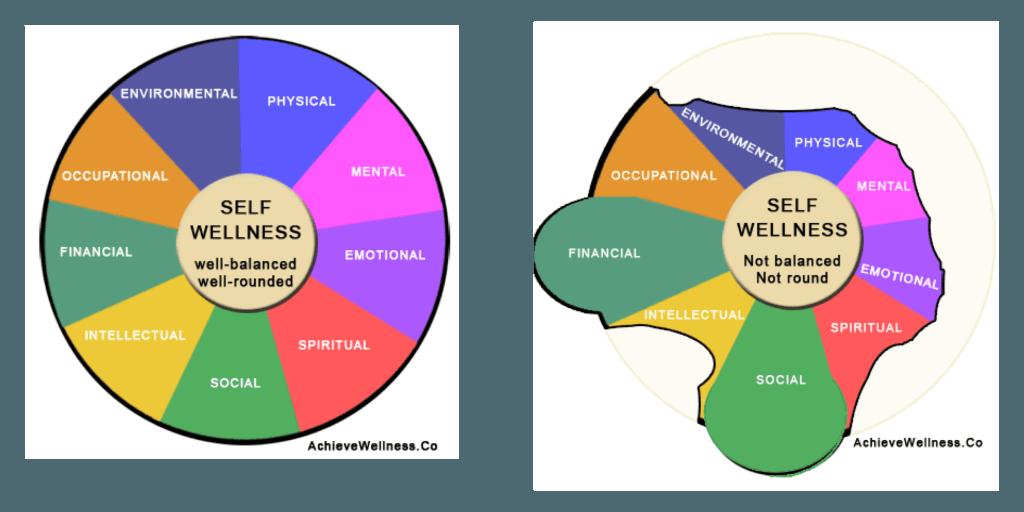 Wellness Wheel, Components of Health, Components of Wellness, What is Health, What is Wellness, Project School Wellness, Janelle Kay