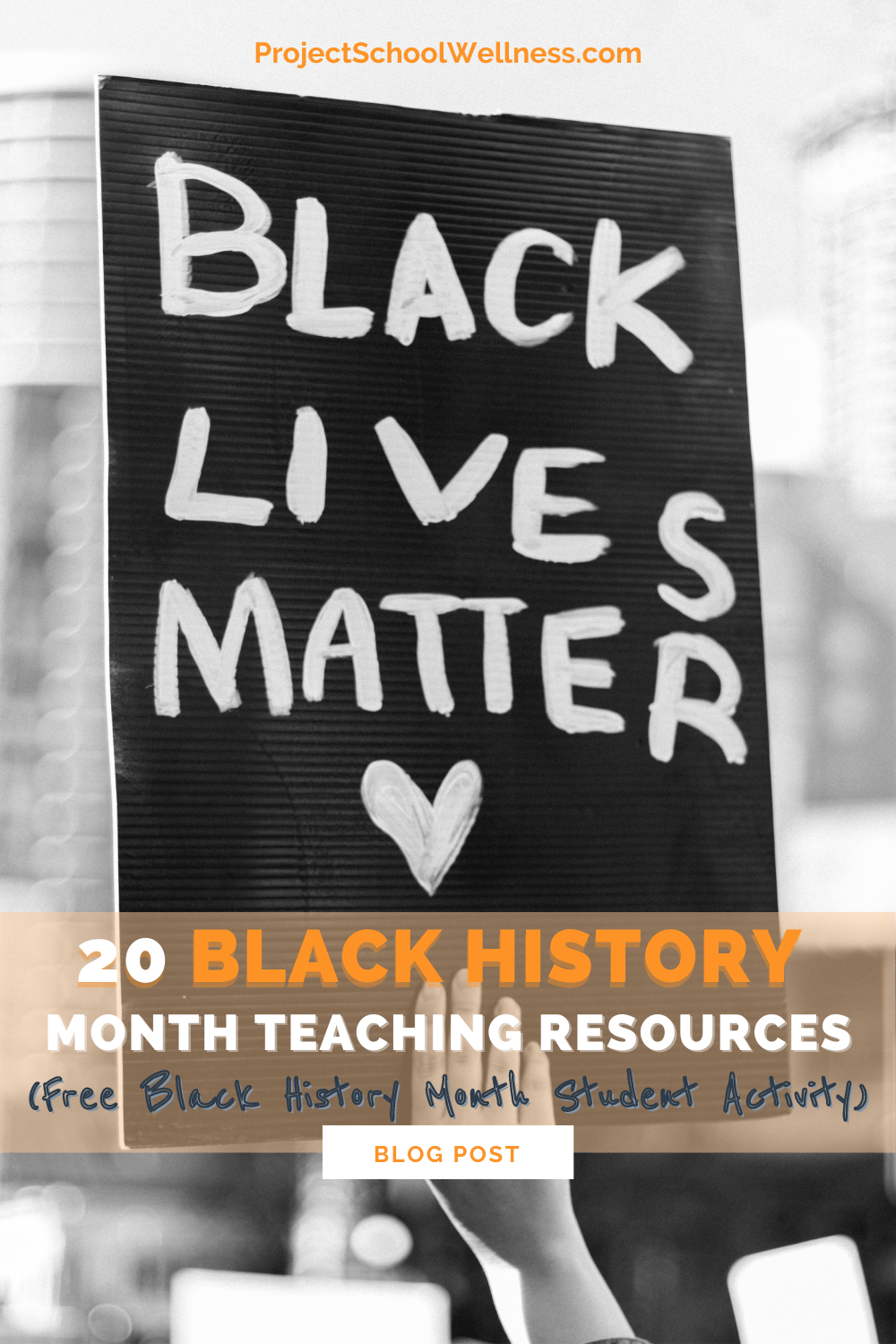 20 Black History Month Teaching Resources